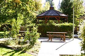 Relaxing Picnic Area in Nevada City