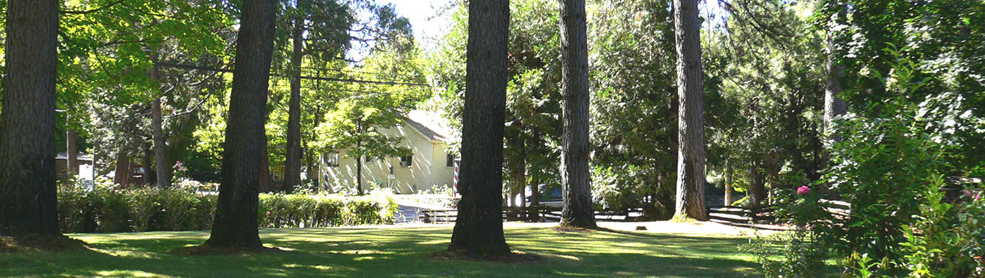 Cabins and hotel rooms in Nevada City CA